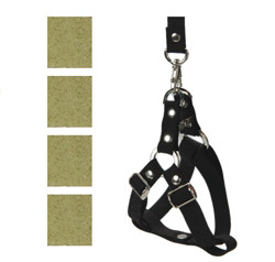 Suede Harness & Leash Set - Green