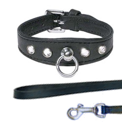 Leather Collar with Rhinestones & Leather Leash
