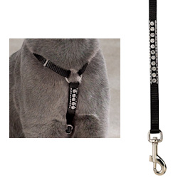 Rhinestone Harness & Leash Set - Black
