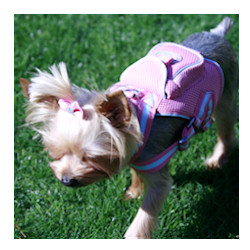 Harness Back Pack & matching leash - Pink