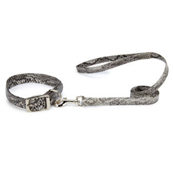 Snake Skin Pattern Collar & Leash set