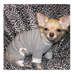 PAJAMAS - GREY & WHITE (Pet Boutique)