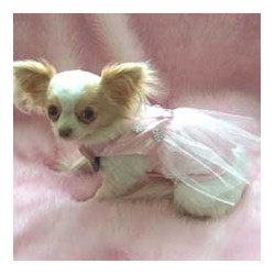 PINK TUTU DRESS (Pet Boutique)