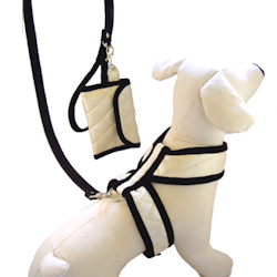 'CHANEL' HARNESS & PURSE SET (ISS)