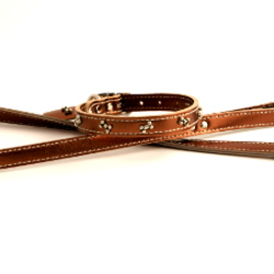 Metallic Leash - Bronze