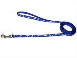 Reflective Leash - Blue