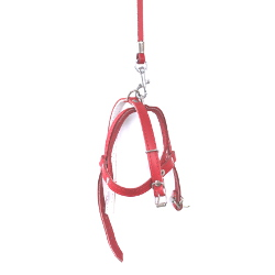 Leather Collar & Harness & Leash Set - Red