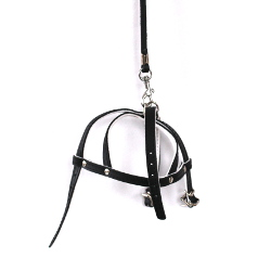 Leather Collar & Harness & Leash Set - Black