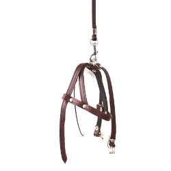 LEATHER COLLAR & HARNESS & LEASH SET - BROWN ()