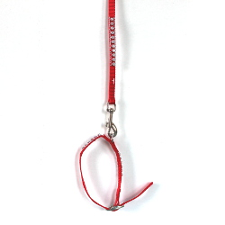 Collar & Leash Set with Rhinestones