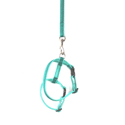 Puppy Harness Set - Turquoise