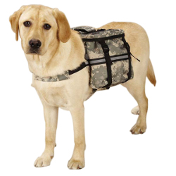 DOG DAY TRIPPER - CAMO (Casual Canine)