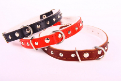 Leather Collar with Studs - Red