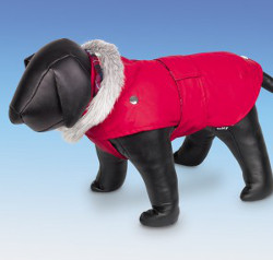 Dog Coat with Belt - Red